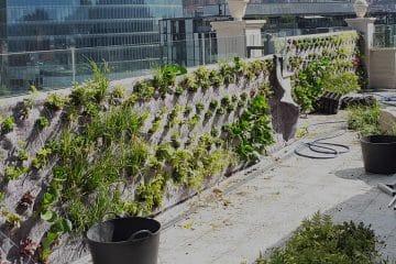 Construcción de jardines verticales