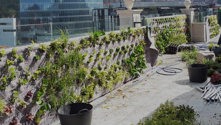Jardines interiores viojard n mantenimiento de for Jardines verticales construccion