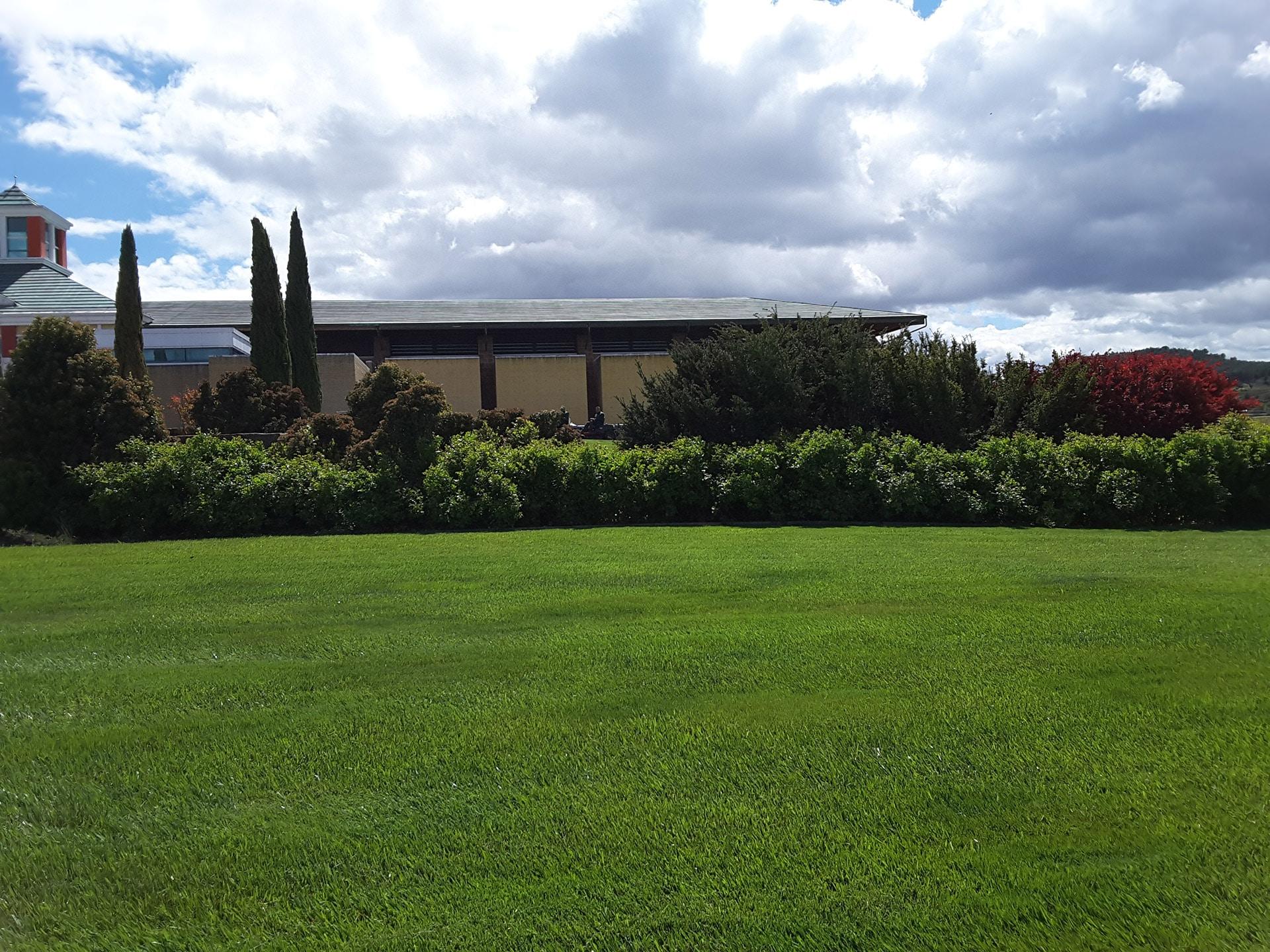 Jardines en fachadas viojard n mantenimiento de jardines y piscinas - Mantenimiento de jardines ...