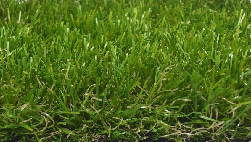 grass-carpet-475928_1920